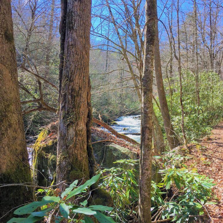 Hazel Creek, Fontana Lake, North Carolina, United States