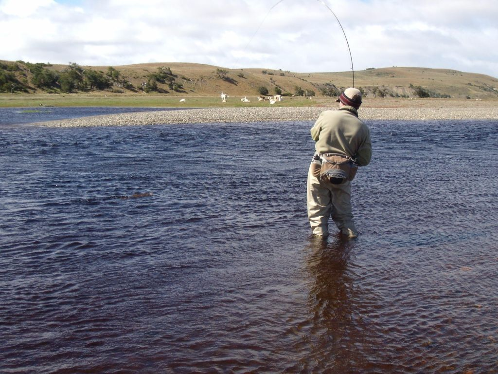 Hoster a estancia r o penitente fly fishing lodge fly for Rio fly fishing