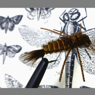 Trout fly designs beyond average