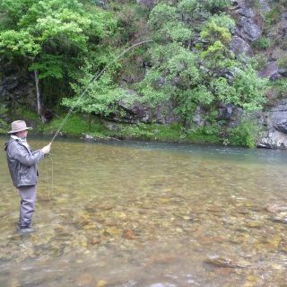 fighting a brown trout of Nive des Aldudes.