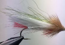 Laurin Parker 's Fly-tyingfor speckled trout -Photo | Fly dreamers
