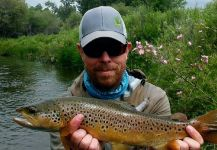 Chris Andersen 's Fly-fishing Pic of a Marrones | Fly dreamers