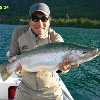 TROPHY RAINBOW - LAKE YELCHO 10 -20 TROUT/ANGLER/DAY ARE COMMON