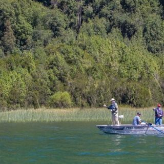 CASTING TO THE REEDS AND UNDERWATER VEGETATION AS WELL AS RISING FISH AND CRUISERS