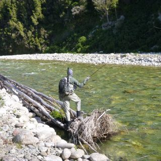 Casting to a good Brown trout on the West Coast