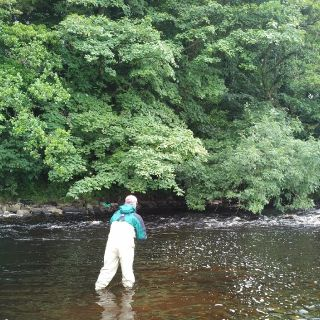 Matt from Arizona guided fly fishing on the River Tees