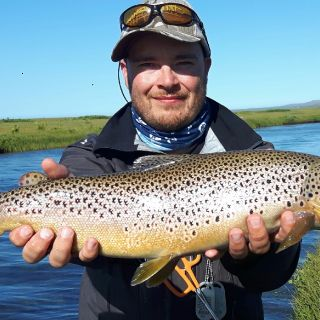 Another fine Brown trout from Lónsá