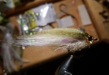 David Bullard 's Fly-tying for Snook - Robalo - Pic | Fly dreamers