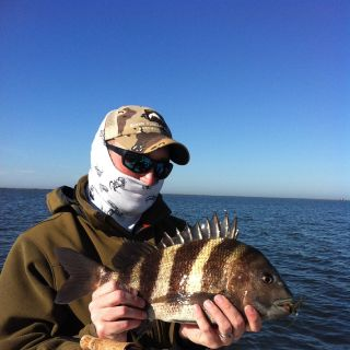 """Jason Bryant with a sheepshead on the fly.  Also known as """"The Texas Permit"""" due to their shyness."""