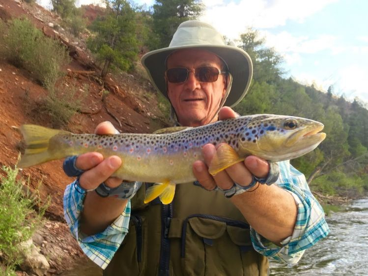 Fishing Report Colorado River By John Packer Fly Dreamers