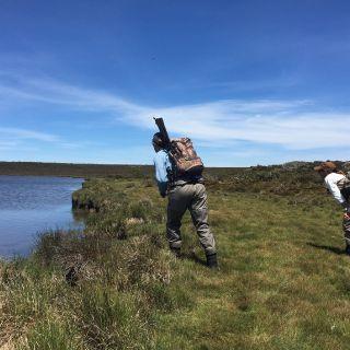 Polaroiding remote Western lakes