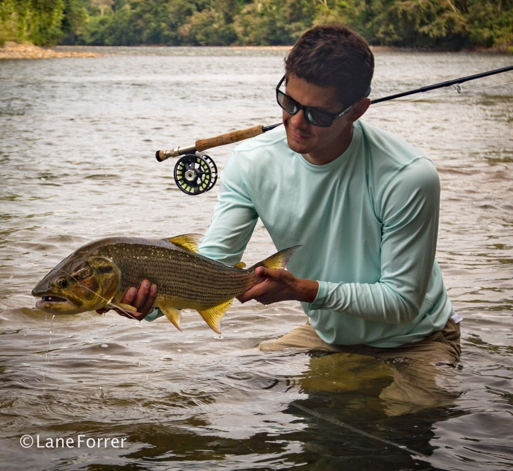 Highlands Ranch Library Location: Highland Anglers - Fly Fishing Outfitter