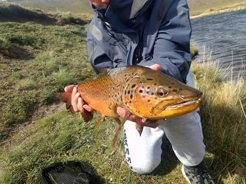 Fishing report rio gallegos chico by estancia carlota for Santa cruz fishing report