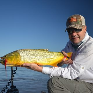 Dorado on the fly