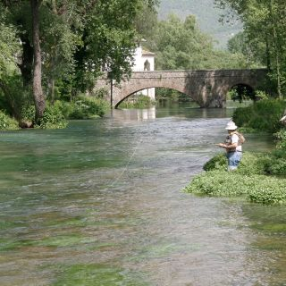 "This water is a real chalk-stream, one of the few in Central Italy. It contains only native and local ""green trout"". Average size 35-40+ cm"