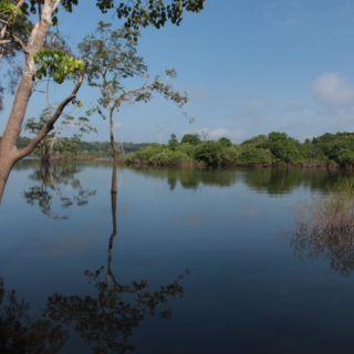 Uatumã River Brazilian Amazon