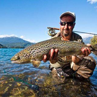 Beautiful trout