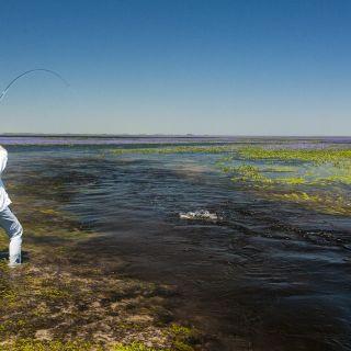 incredible fishing