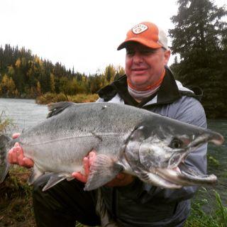 Silver Salmon hog