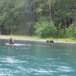 Kenai is a great place to learn to fish