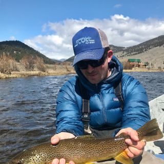Showing off a great Montana Brown trout