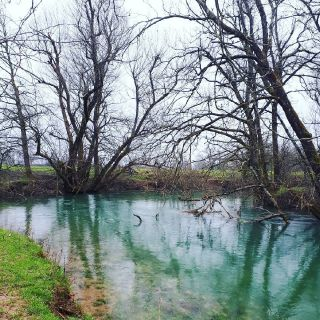 Bistra river
