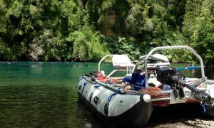 Río Rahue, Osorno, Osorno, Region de los lagos, Chile, Chile