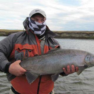 Sea trout in Rio Grande