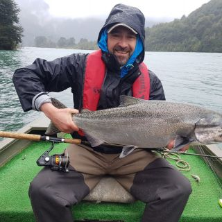 Salmon Chinook