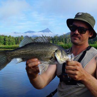 Australian Bass, Clarrie Hall Dam