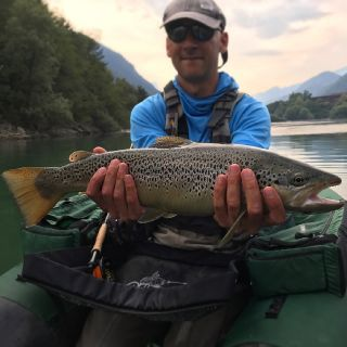 A solid brown trout on Slovenia Jurassic lake