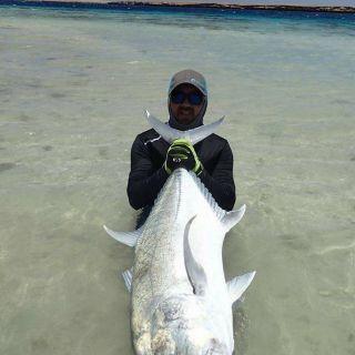 Big GT from shore in Sudan, Nubian Flat