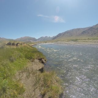 Rio Buraleo -  Norte Neuquino