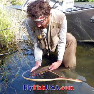 A native Deschutes River redband trout caught with a dry fly. Released unharmed!
