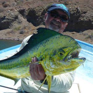 Mark Bachmann, owner of The Fly Fishing Shop in Welches, Oregon has fished for dorado in the Sea of Cortez for 18-years