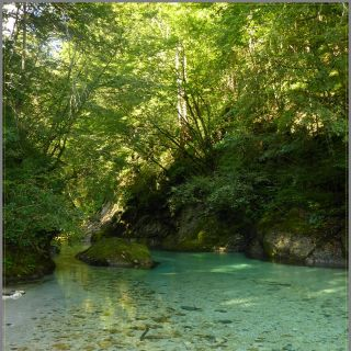 Hidden river pockets of Slovenia - Only Guides know them..