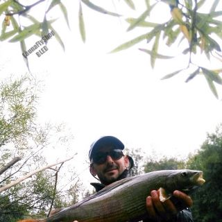 50cm-er, Late October month Sava Dolinka river!