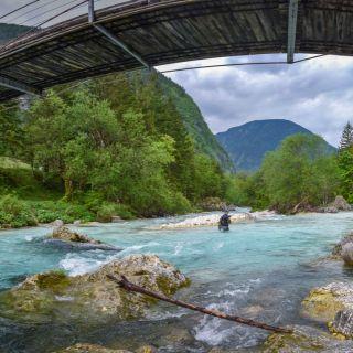 Soca river - solitary angler