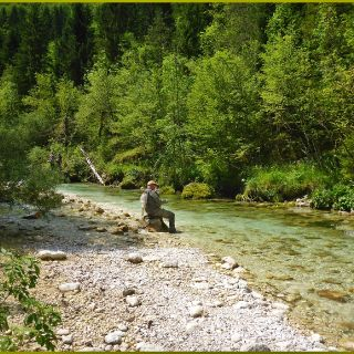 Where the minds and soul find their resting place.. Nearby town Bled fishing area..