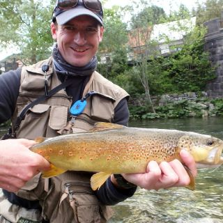 Jumping downtown and catching a Marble Trout along! Idrija river basin area..