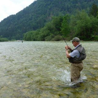 The Sava Bohinjka river - Spring