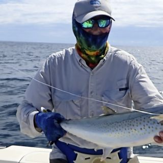 Pacific Sierra Mackerel on fly with Come Fish Panama