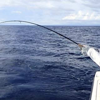 John on a fly rod bend fight with Yellowfin Tuna