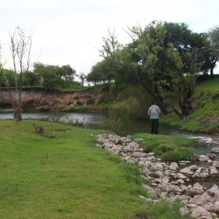 Clearwater streams with Dorados and Wolf FIsh..