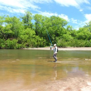 Dorados, Wolf Fish and wading waters