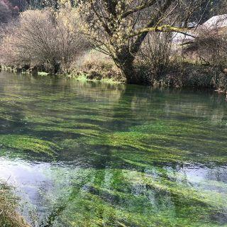 Radescica Chalk stream