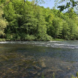 Krka Chalk Stream - summer