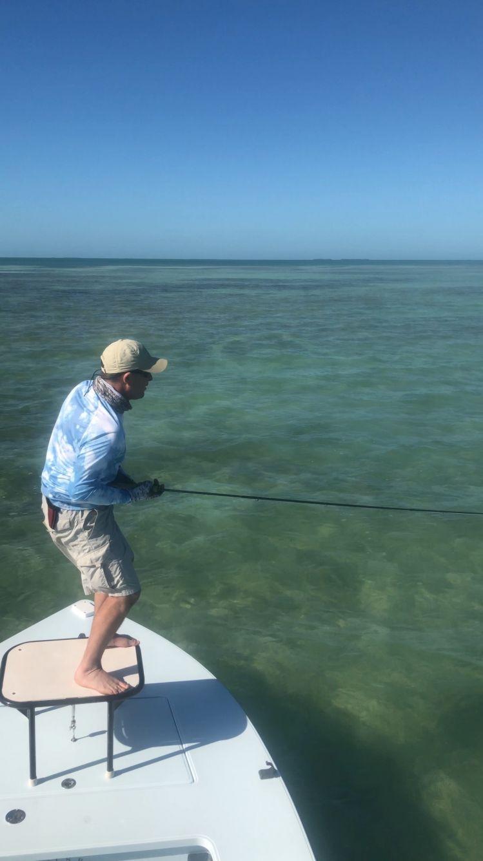 Biscayne bay, Keys and the Everglades, Miami, Florida Keys, United States