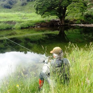 Choosing a dry fly to make one cast to the big resident brown trout that patrols this large pool.