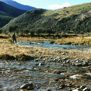 The upper reaches of the Mataura River are also a great destination for stalking brown trout.